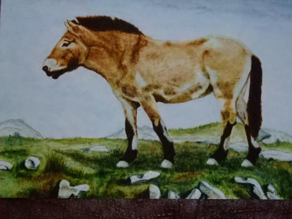 http://adesesleus.cowblog.fr/images/peinturesAlain014.jpg